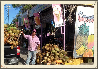 ASIS FRUITSWAGEN  Sells fresh fruits and vegetables. A lot of produce is organic and grown by local farmers. Asis is well known for fresh coconuts and free advice on how tu use fruits and herbs as remedy for specific ailments.   https://www.facebook.com/Asis-Fruits-Wagen-131985720300270/timeline