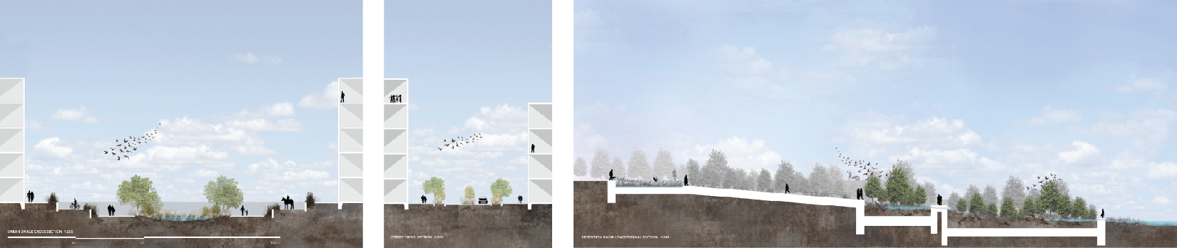 Various Cross and Longitudinal Sections showing the different urban conditions and the rain gardens and swales