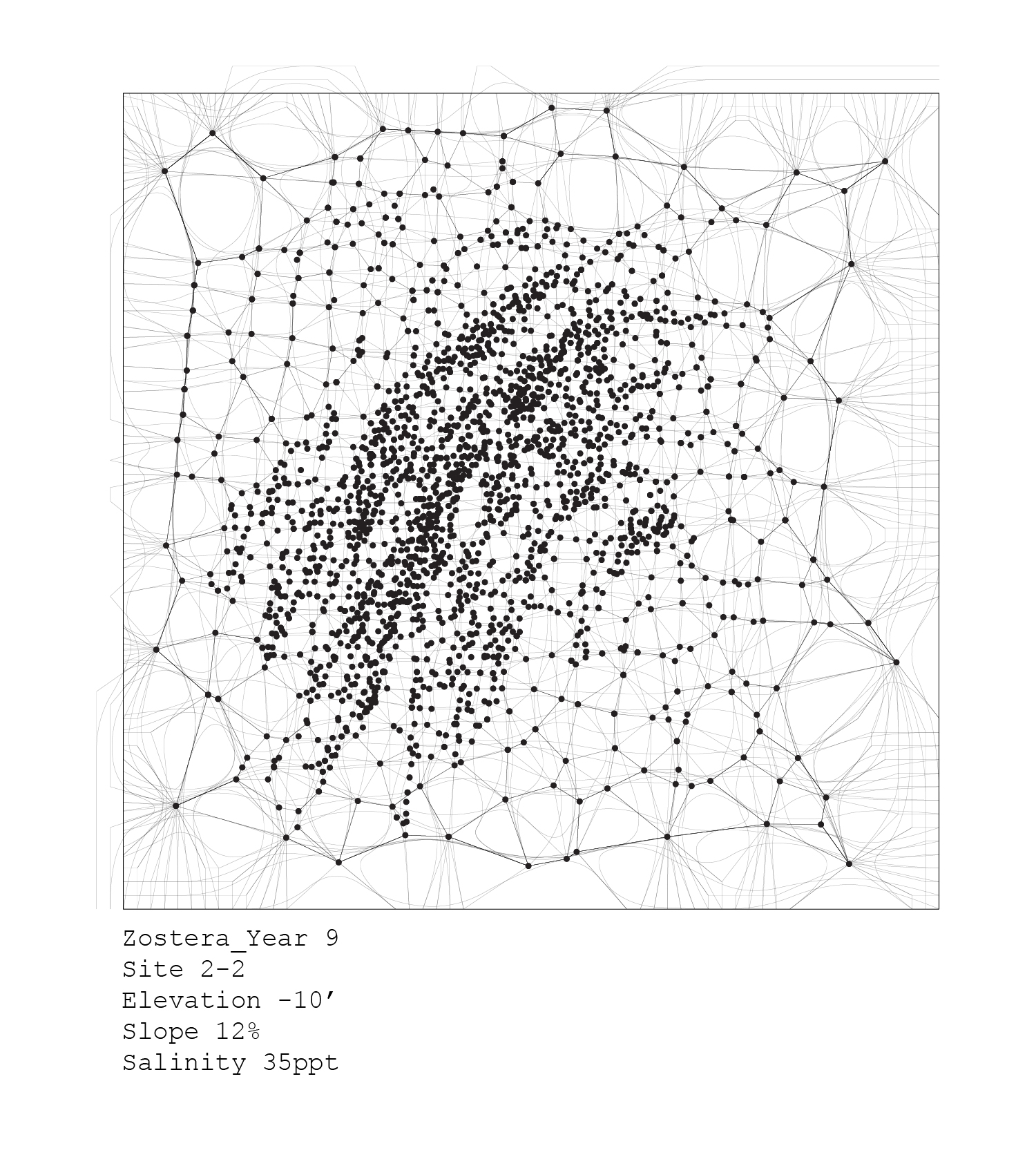 plants_analyses-11.jpg