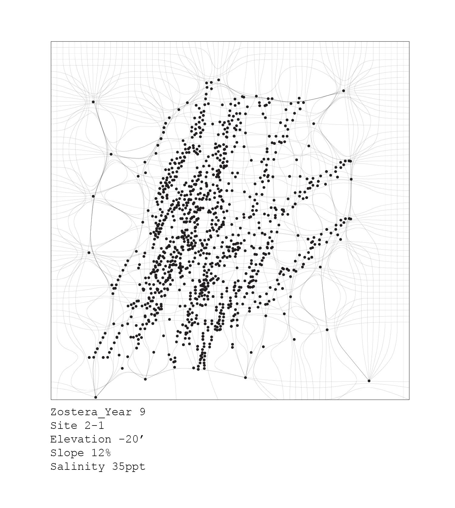 plants_analyses-10.jpg