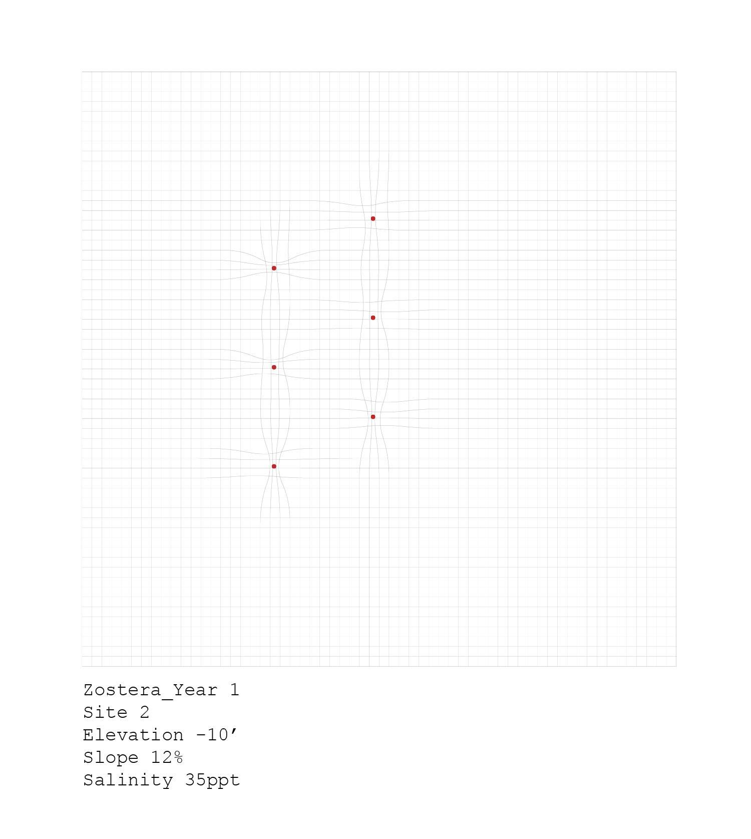 plants_analyses-04.jpg