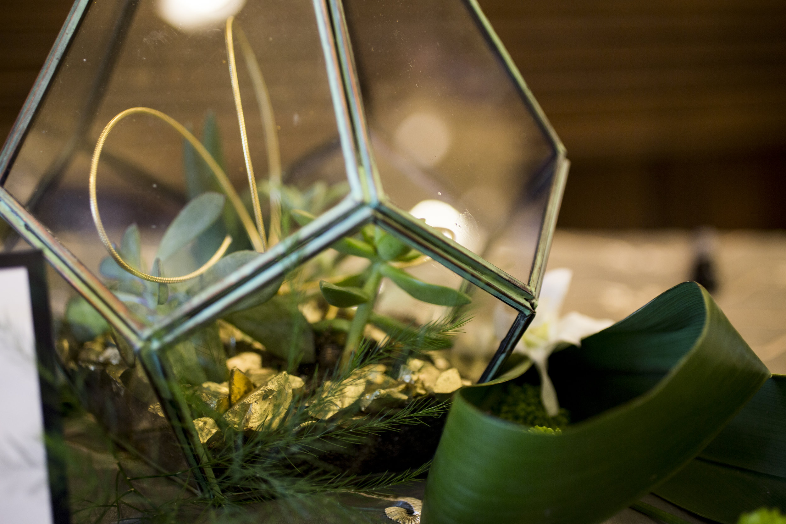 terrarium and succulent arrangement with palm leaf by Rison Design | Photo by Courtney June Photography | Sixpence Events & Planning