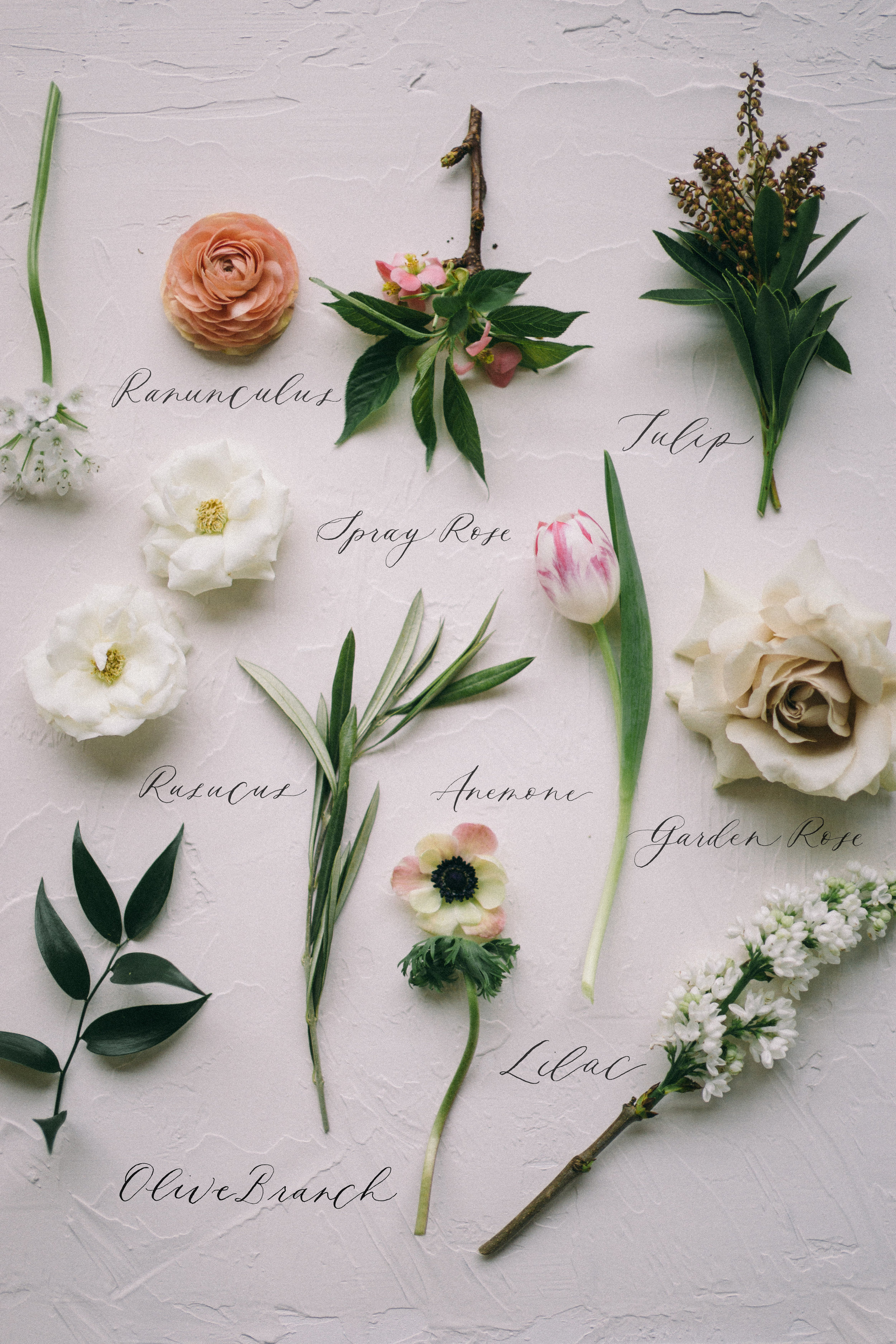The Heirloom Bouquet process | modern bridal bouquet preservation | blog post by Sixpence Events & Planning, Minneapolis wedding planner