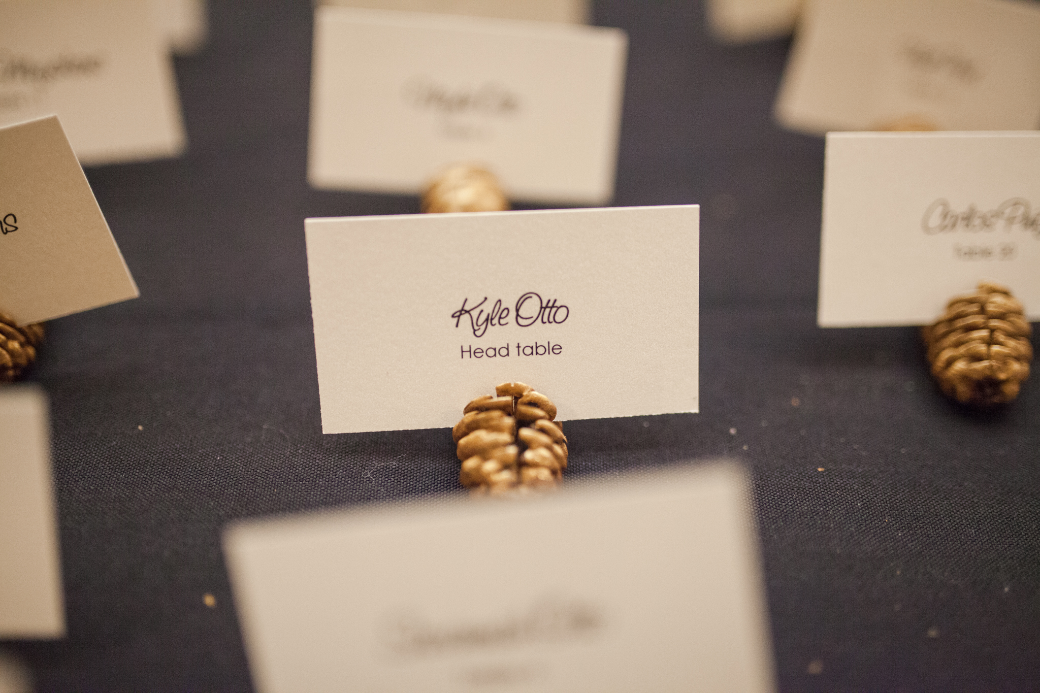 Mini pinecones sprayed gold for place card escort card table  | Sixpence Events & Planning | Jessa Anderson Photography | winter wedding