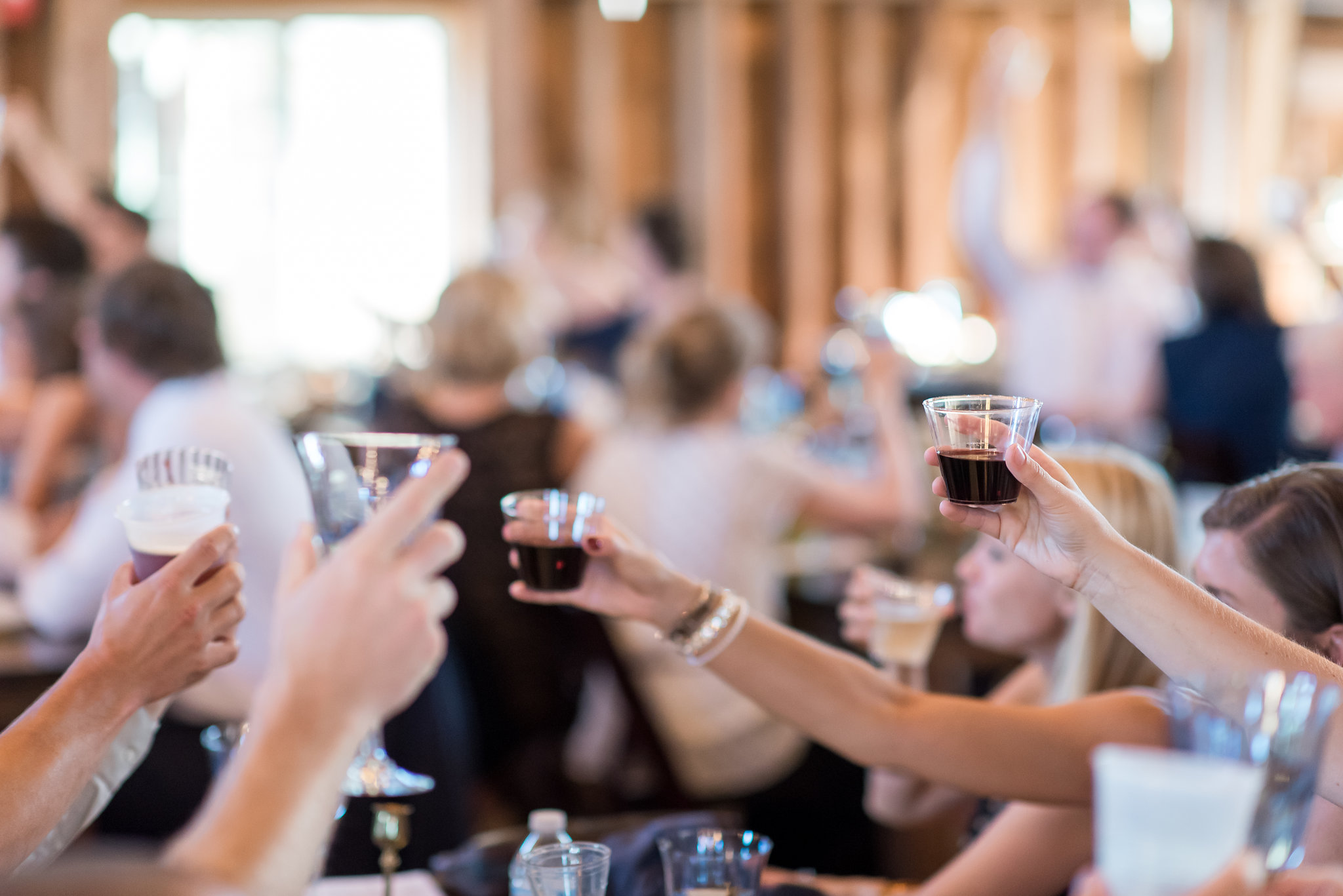 cheers toast | plastic wine glasses | Kelly Birch Photography :: Bloom Lake Barn :: Sixpence Events Minnesota wedding planner :: A Vintage Touch Weddings :: Brett Dorian.jpg