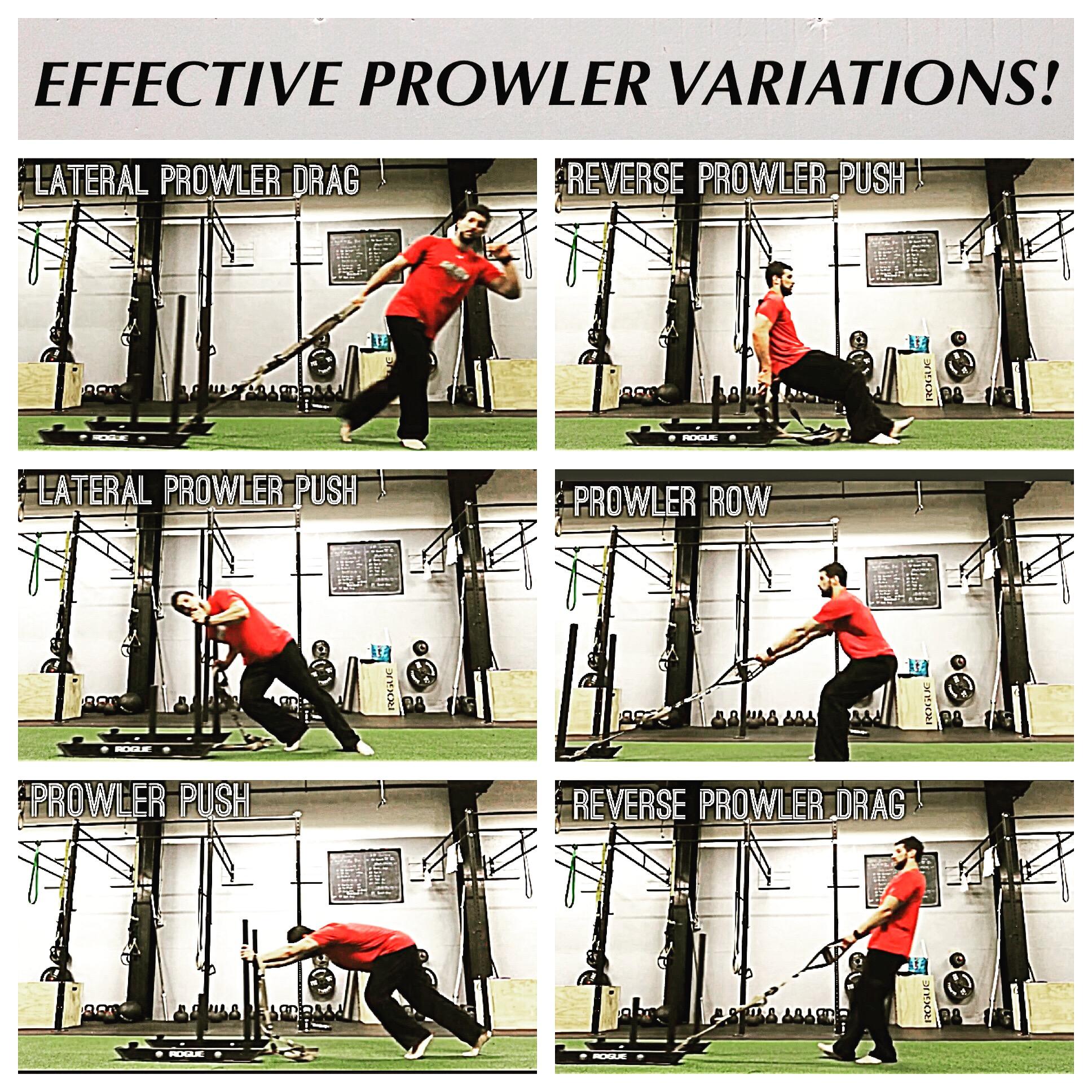 Six Prowler Variations.JPG