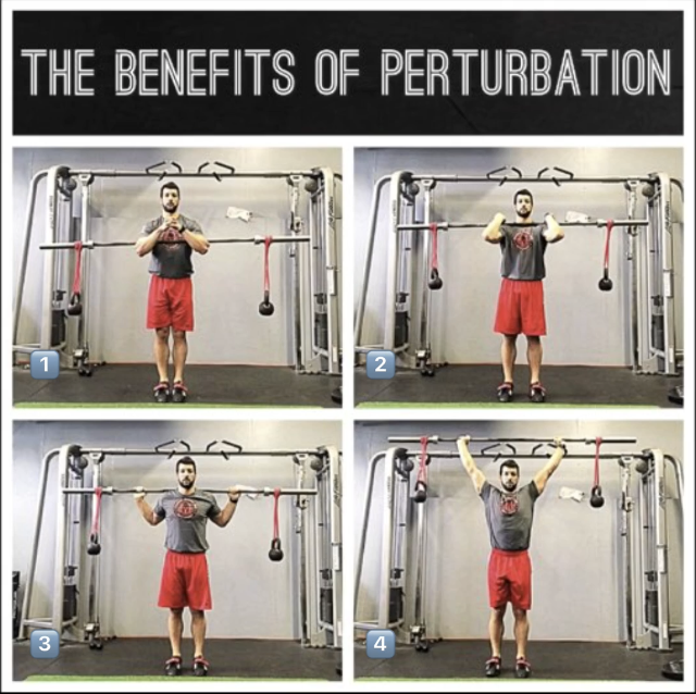 The benefits of perturbation.png