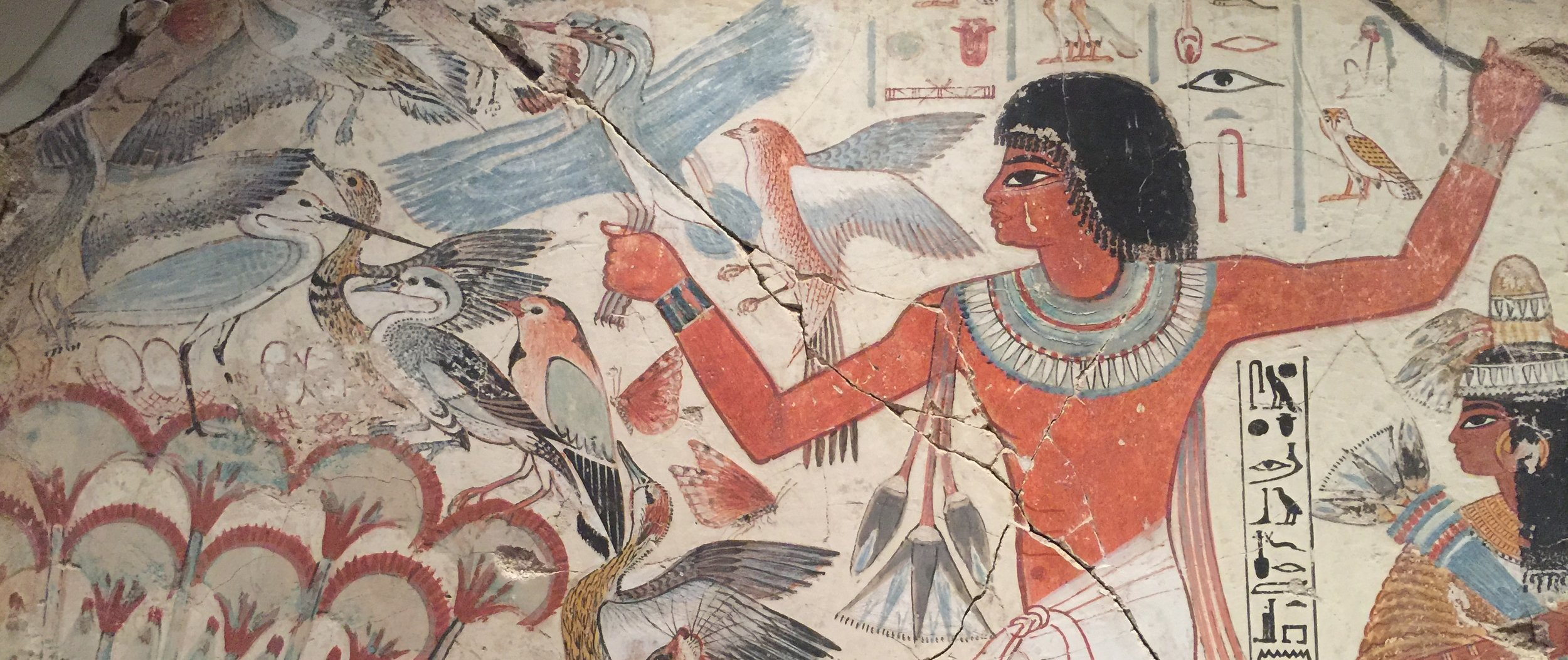 From the tomb of Nebamun in the British Museum (photo RYC).