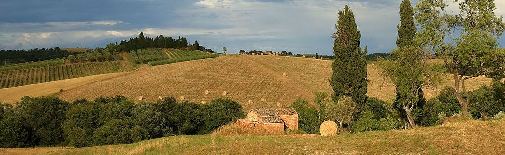 Tuscan countryside in June after the wheat harvest. Photo by Martin Falbisoner (Wikimedia Commons, cropped by RYC)