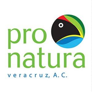 Pronatura Veracruz A. C