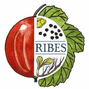 RIBES, Rete Italiana banche del germoplasma