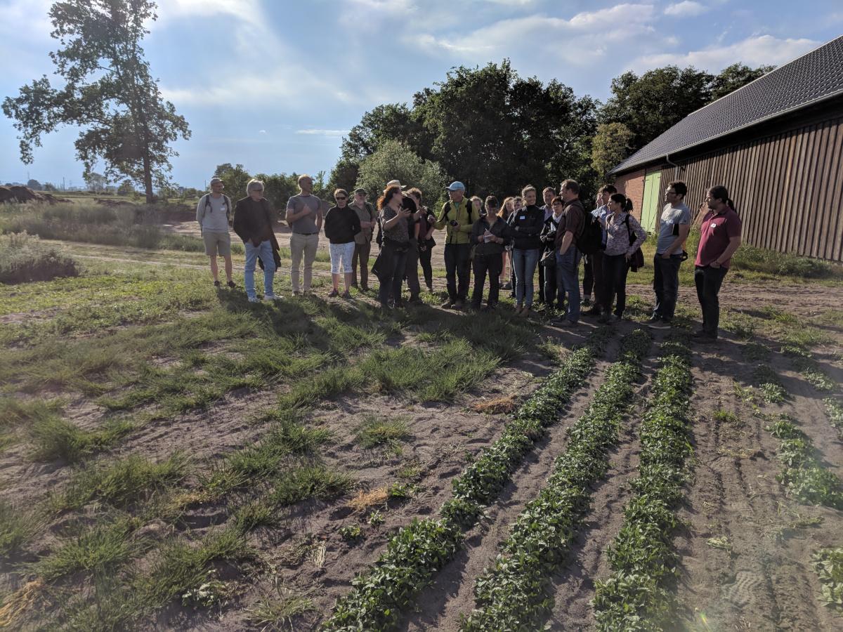 Visit at Negola RE seed farm