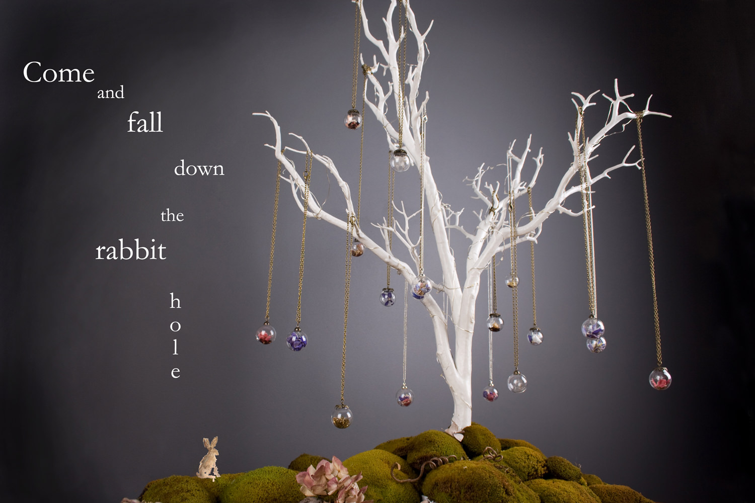Enchanted-tree-with-come-and-fall-down-the-rabbit-hole-b.jpg