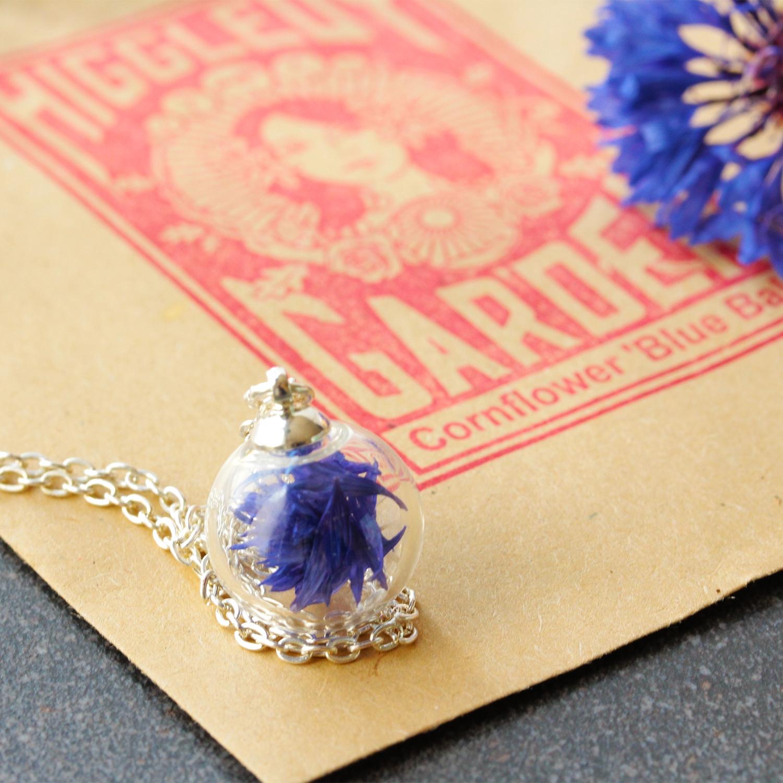 Lizzy chambers Blue cornflowers.jpg