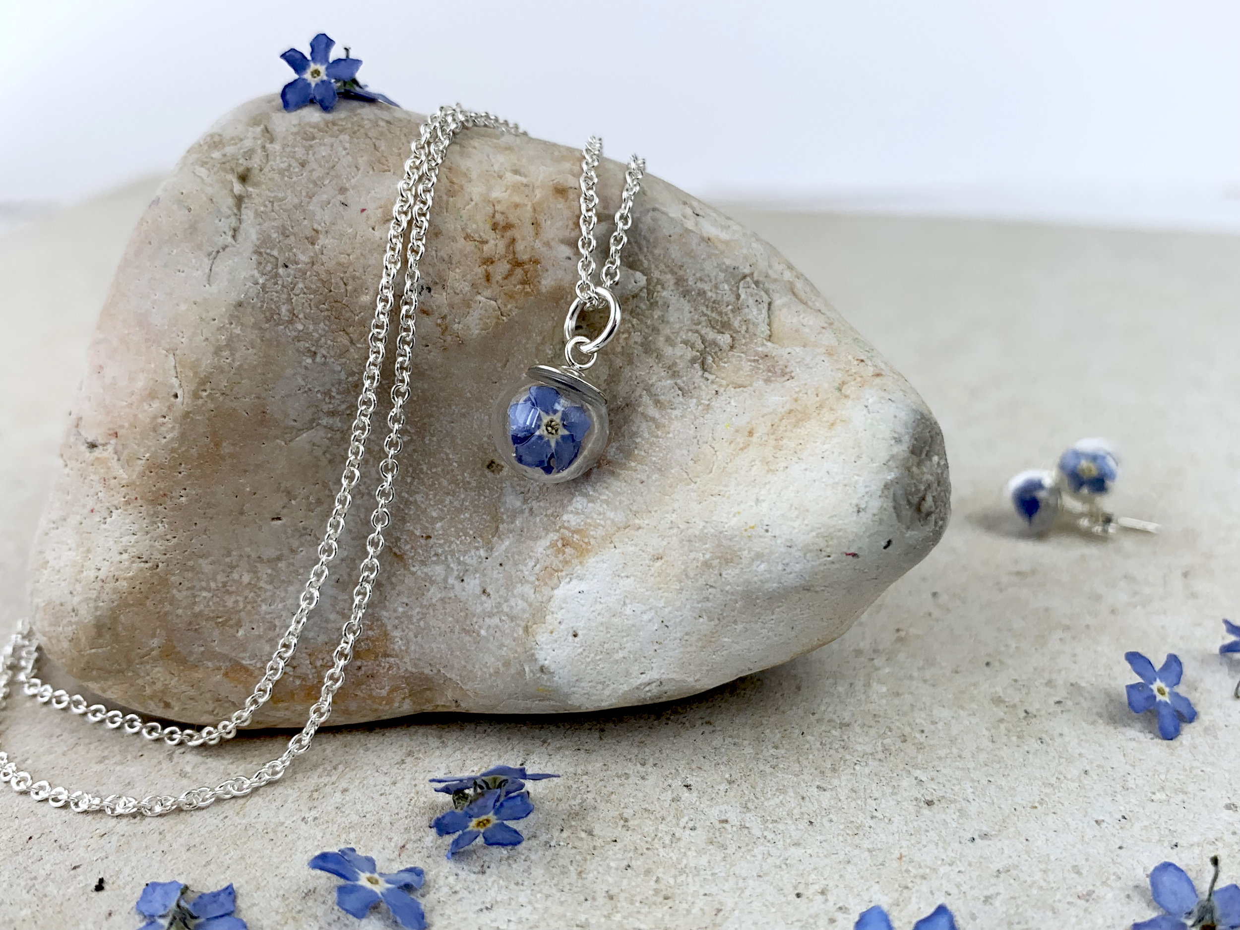 New - Forget-Me-Not Collection