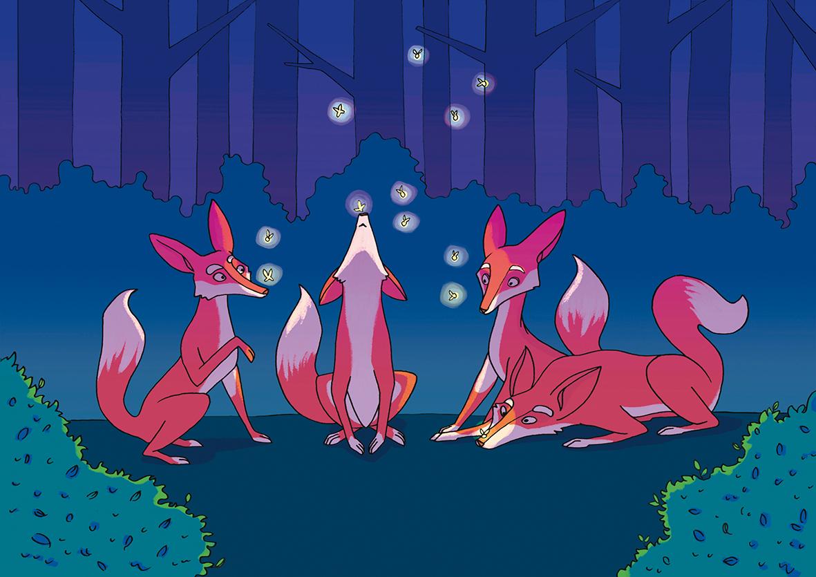 Night with fireflies