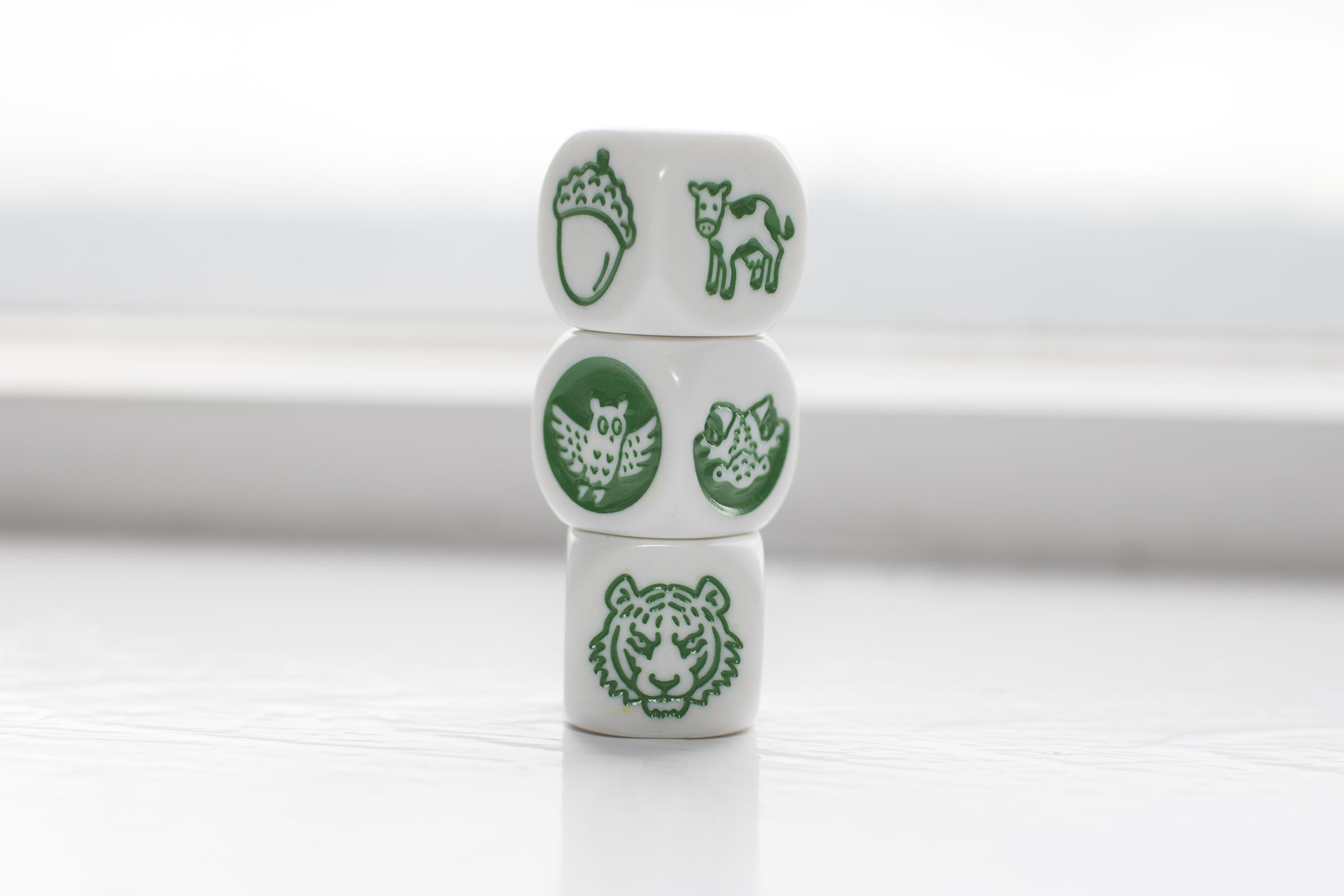 Animalia Cubes.jpg