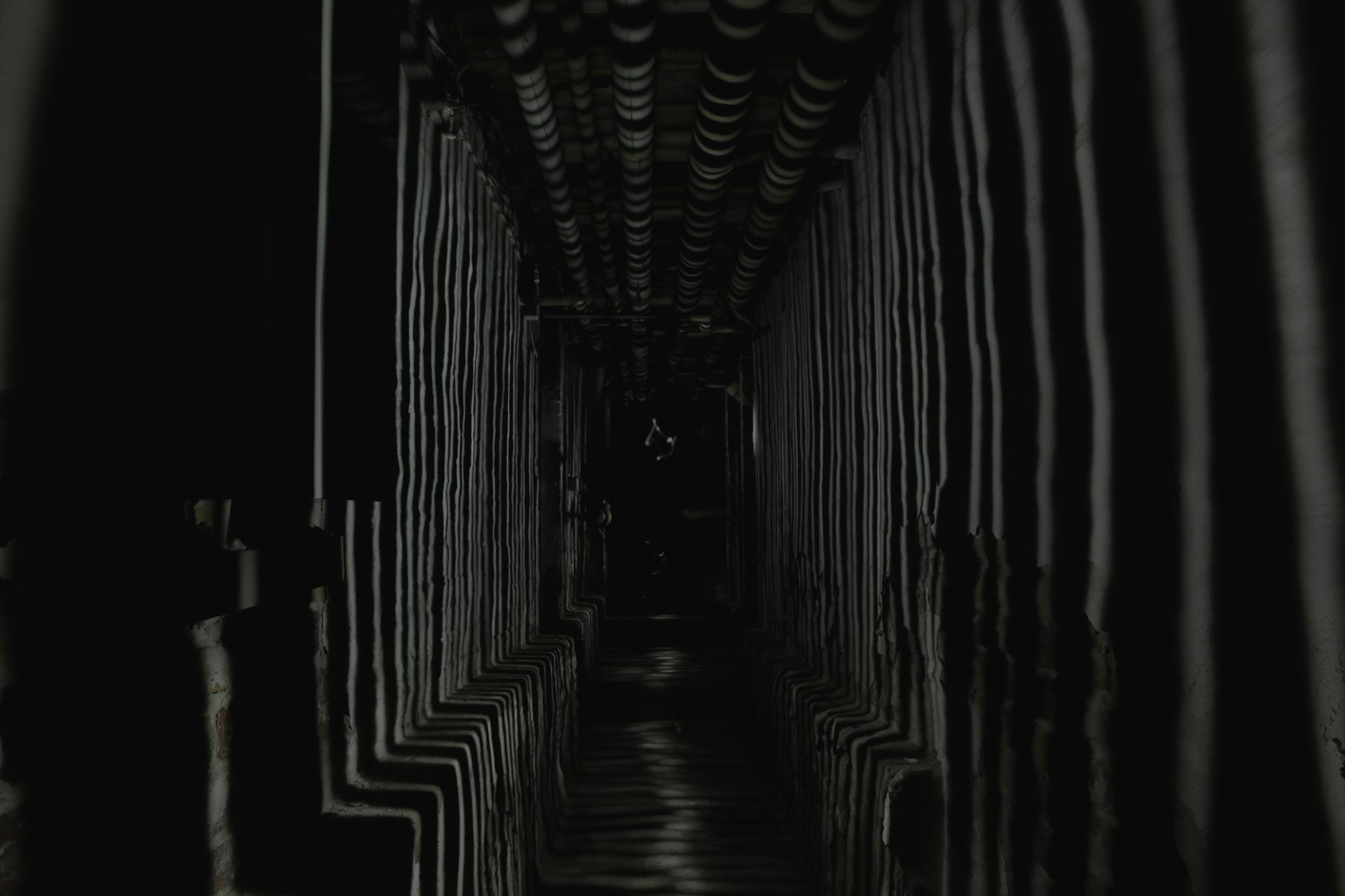walking thinner light merged.jpg