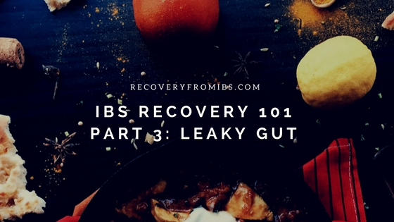 IBS recovery 101Part 1_ SIBO(1).jpg