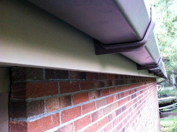 Gutter and new fascia board