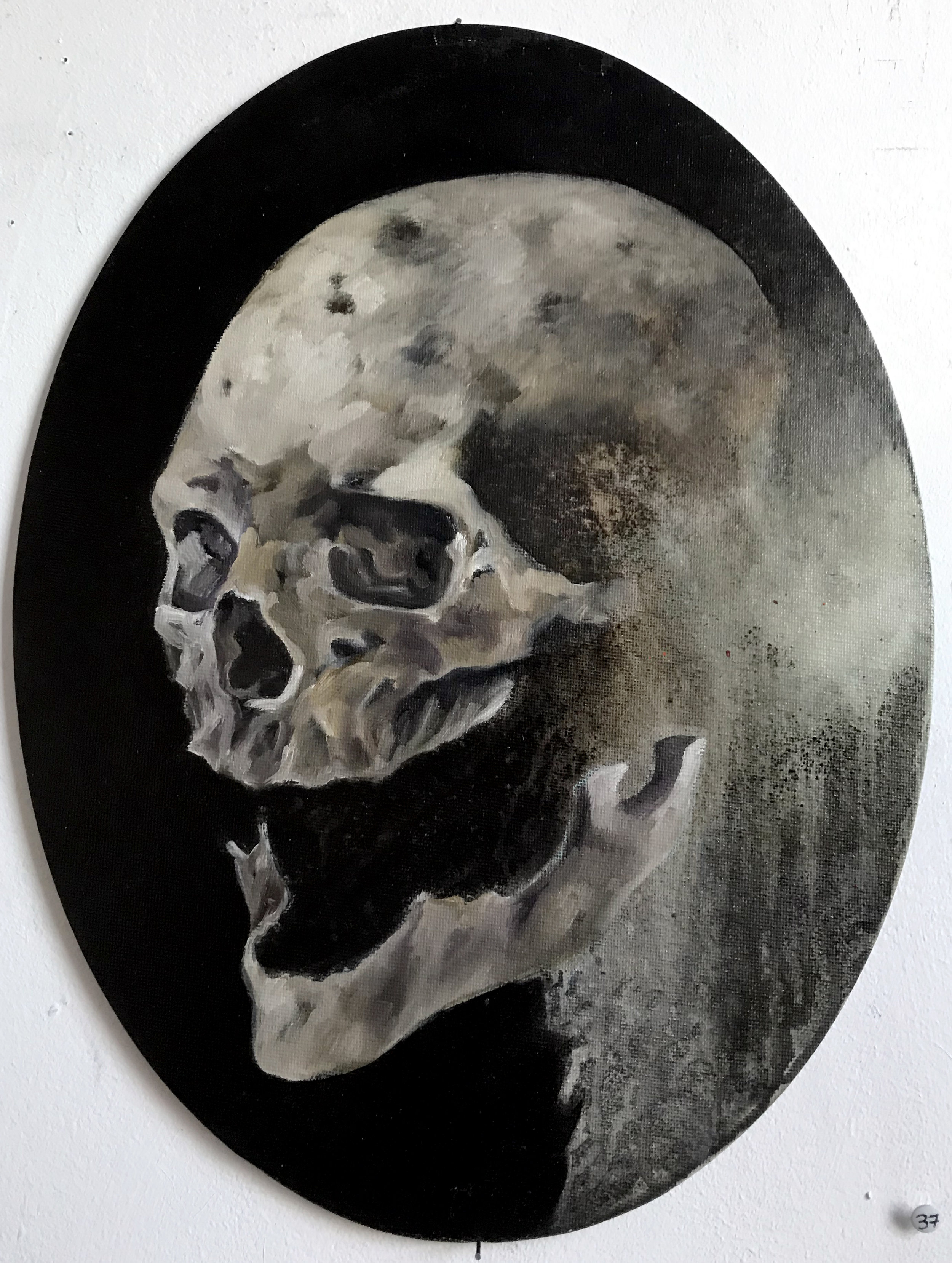 Fragogna_Oval_Skull_Oil on Museum Board_approx 15.5 x 12.jpg