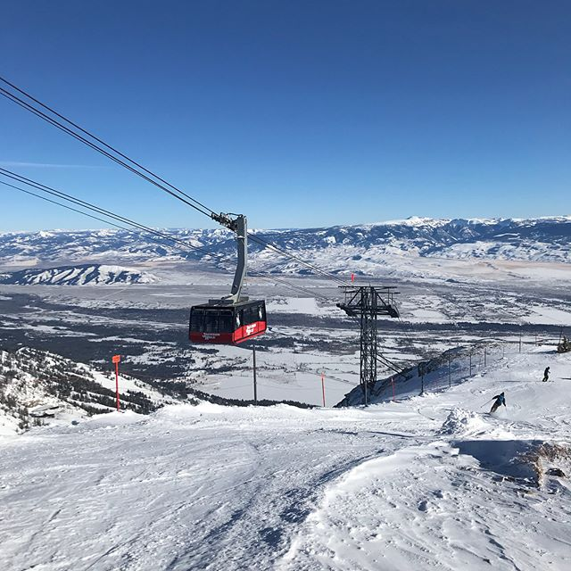 It doesn't get much better than this. Sunny skies and walk on trams!  #apexrealestate #apexrentals #wyoming #skiing #ginadujour #jacksonhole #comehere #visit