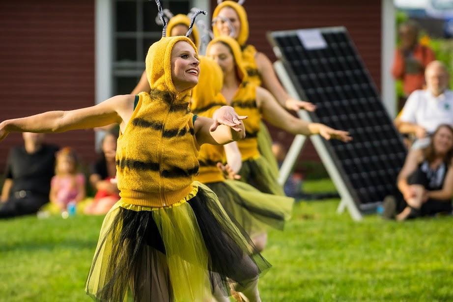 Farm to Ballet Honey Bees, Photo- Jonas Powell.jpg