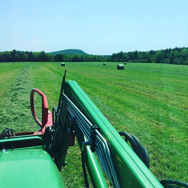 Our first hay of the season, certified organic @nofavermont will be for sale at our farm market opening soon! #philoridgefarm #organichay