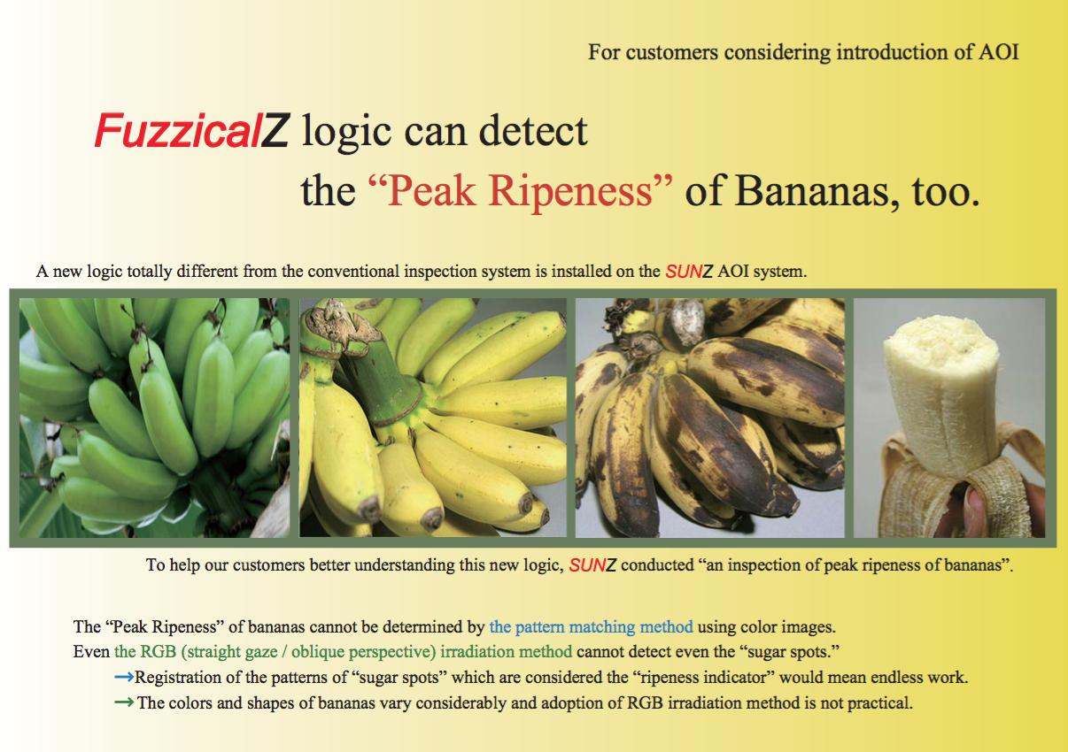 FuzzicalZ  Report