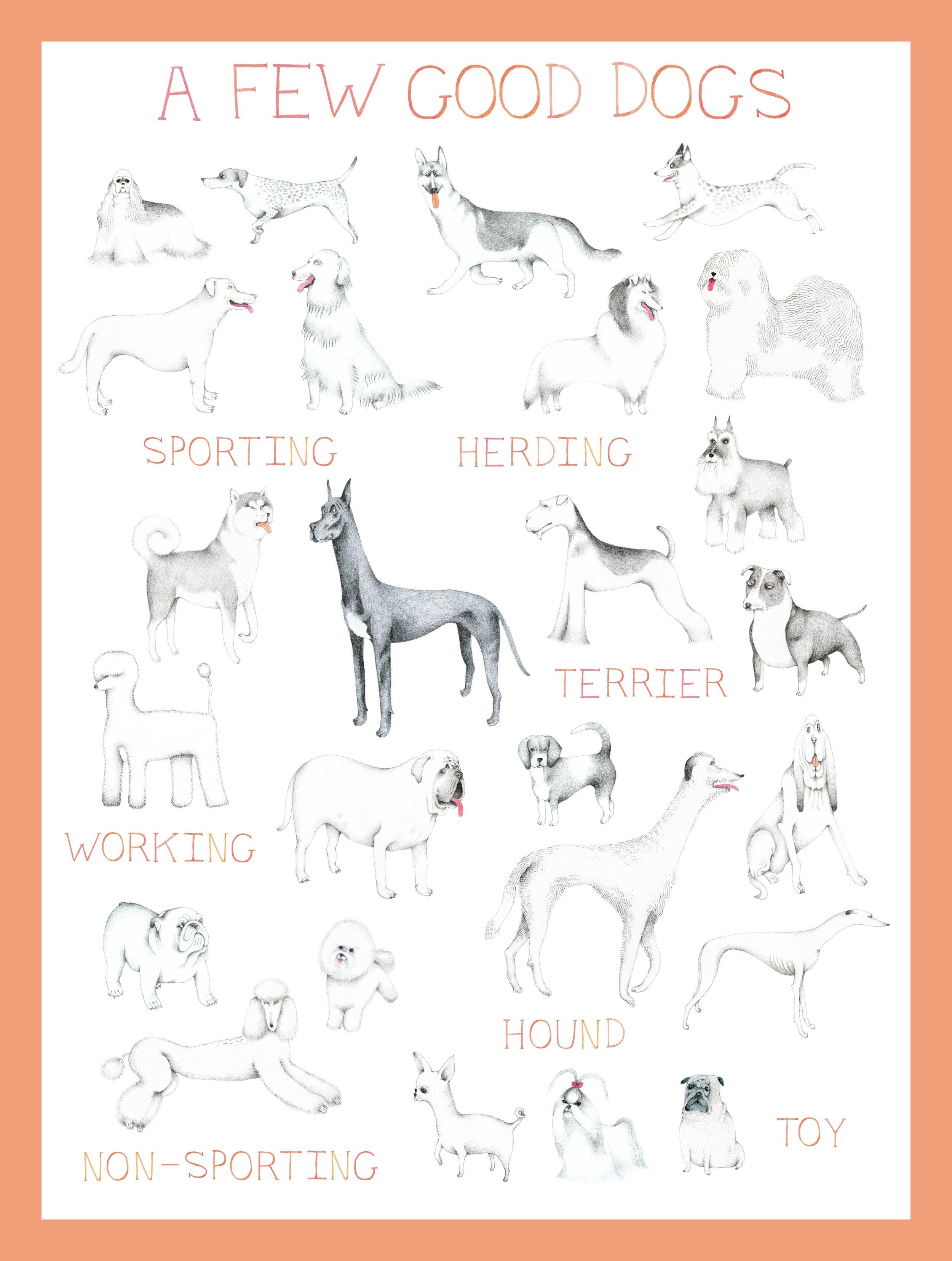 A Few Good Dogs_Swift_med-01.jpg