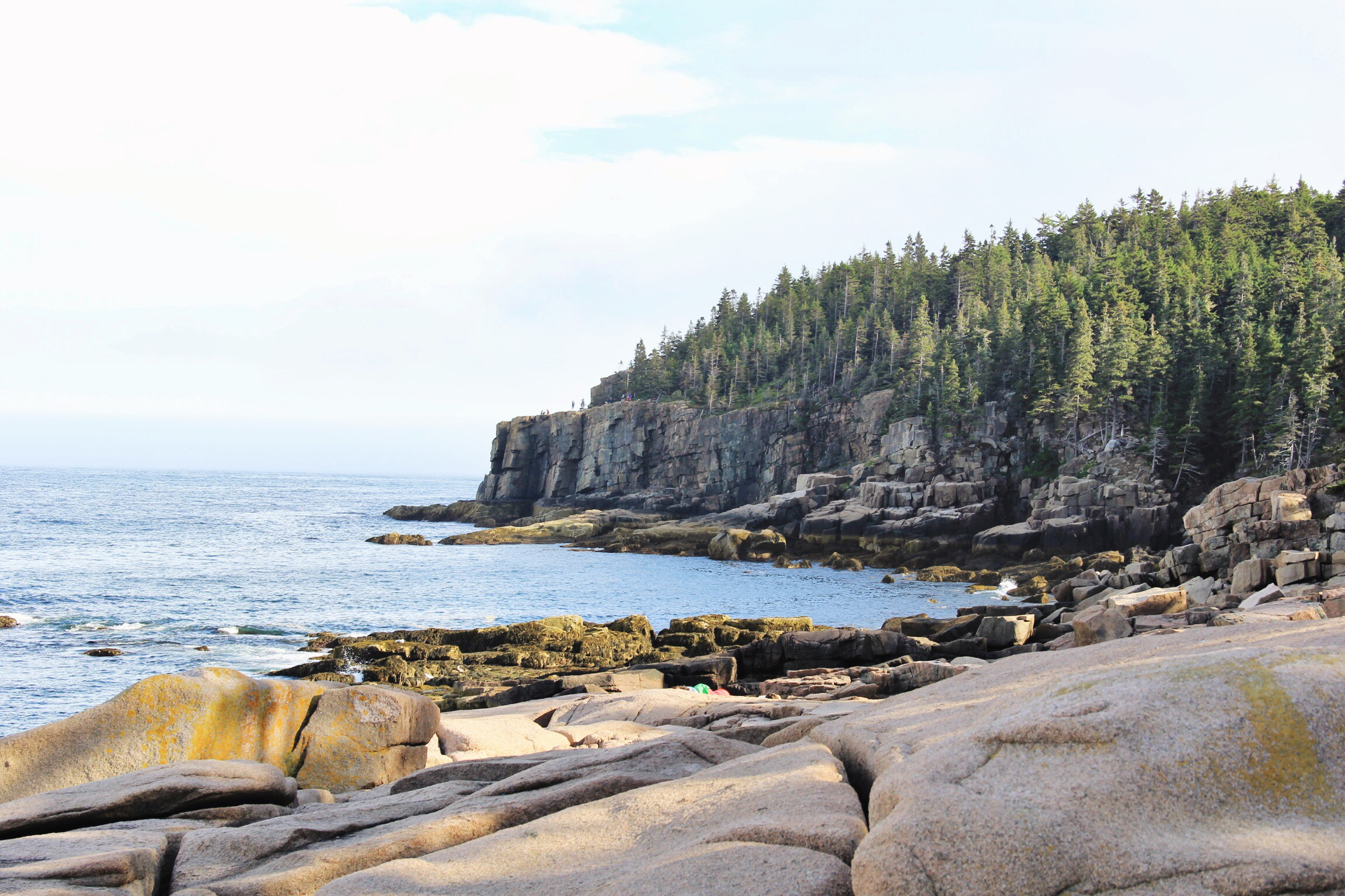 Acadia National Park - The Pastiche