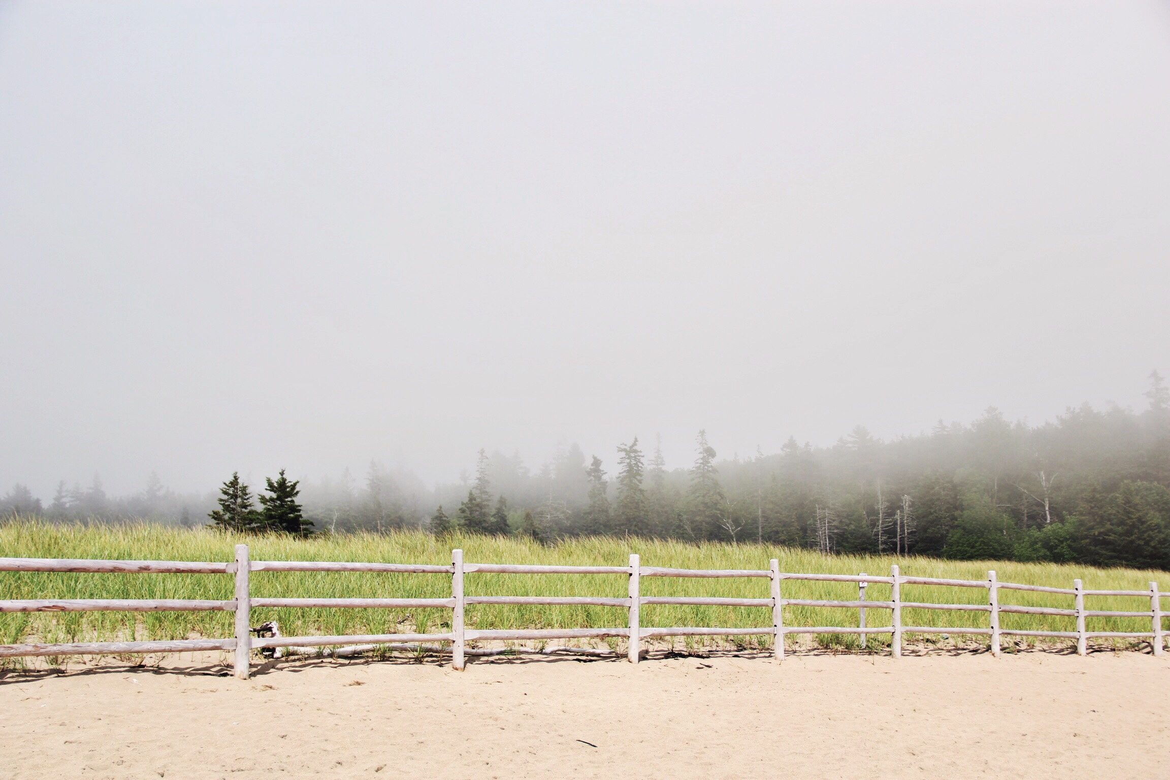 Sand Beach, Acadia National Park - The Pastiche