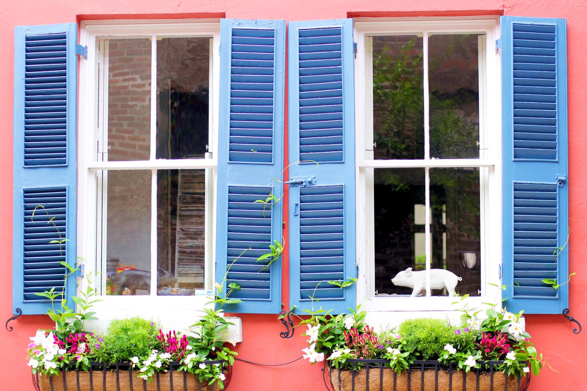 Charleston, South Carolina - The Pastiche