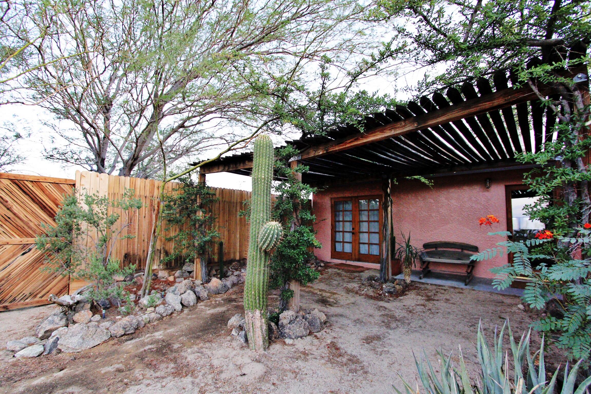 Our desert backyard for a few days