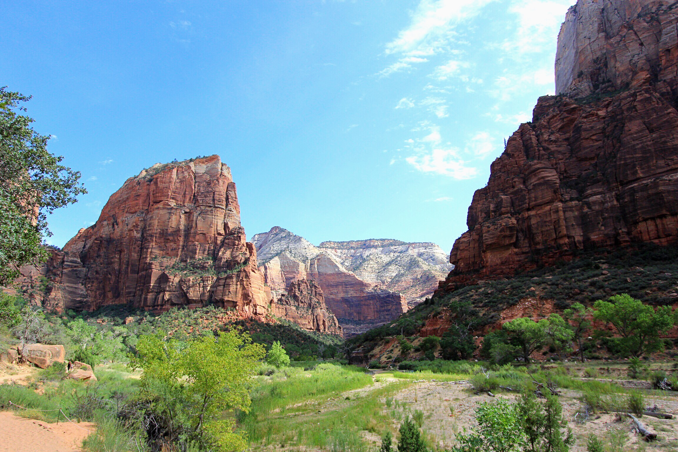 View of Angels Landing from the bottom of Zion Canyon