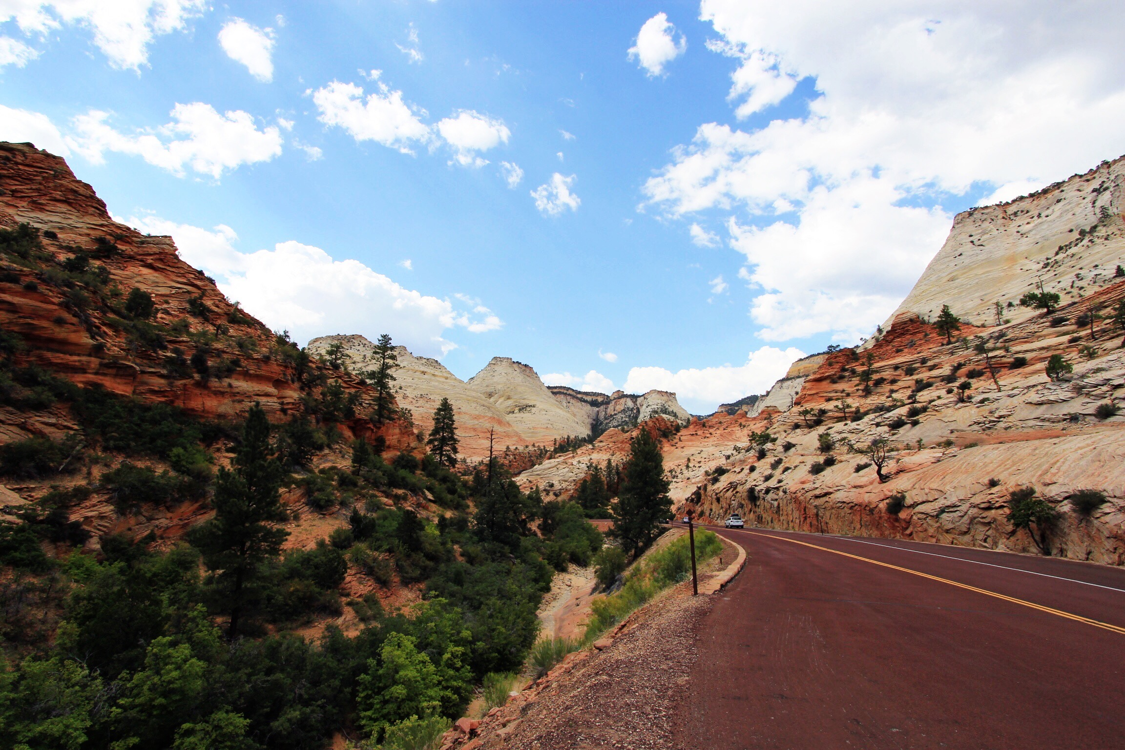 On the road out of Zion