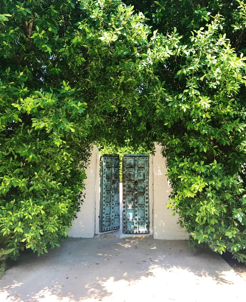 Secret Garden vibes outsider at the Parker