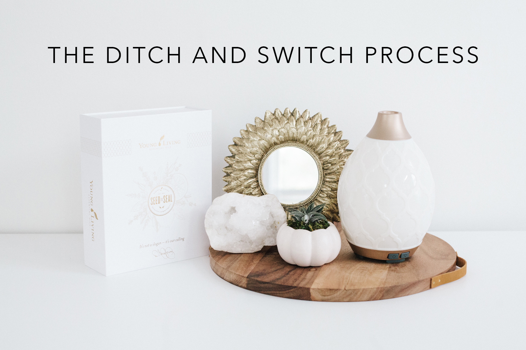 The Ditch And Switch Process