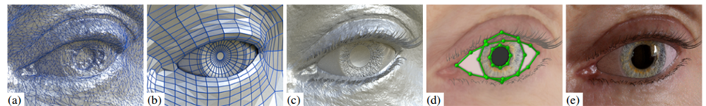 Synthetic data generated by 3D renderings of eyes.  Source .