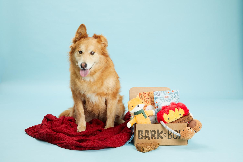 BarkBox ,  $35/1 month up to $249/12 months