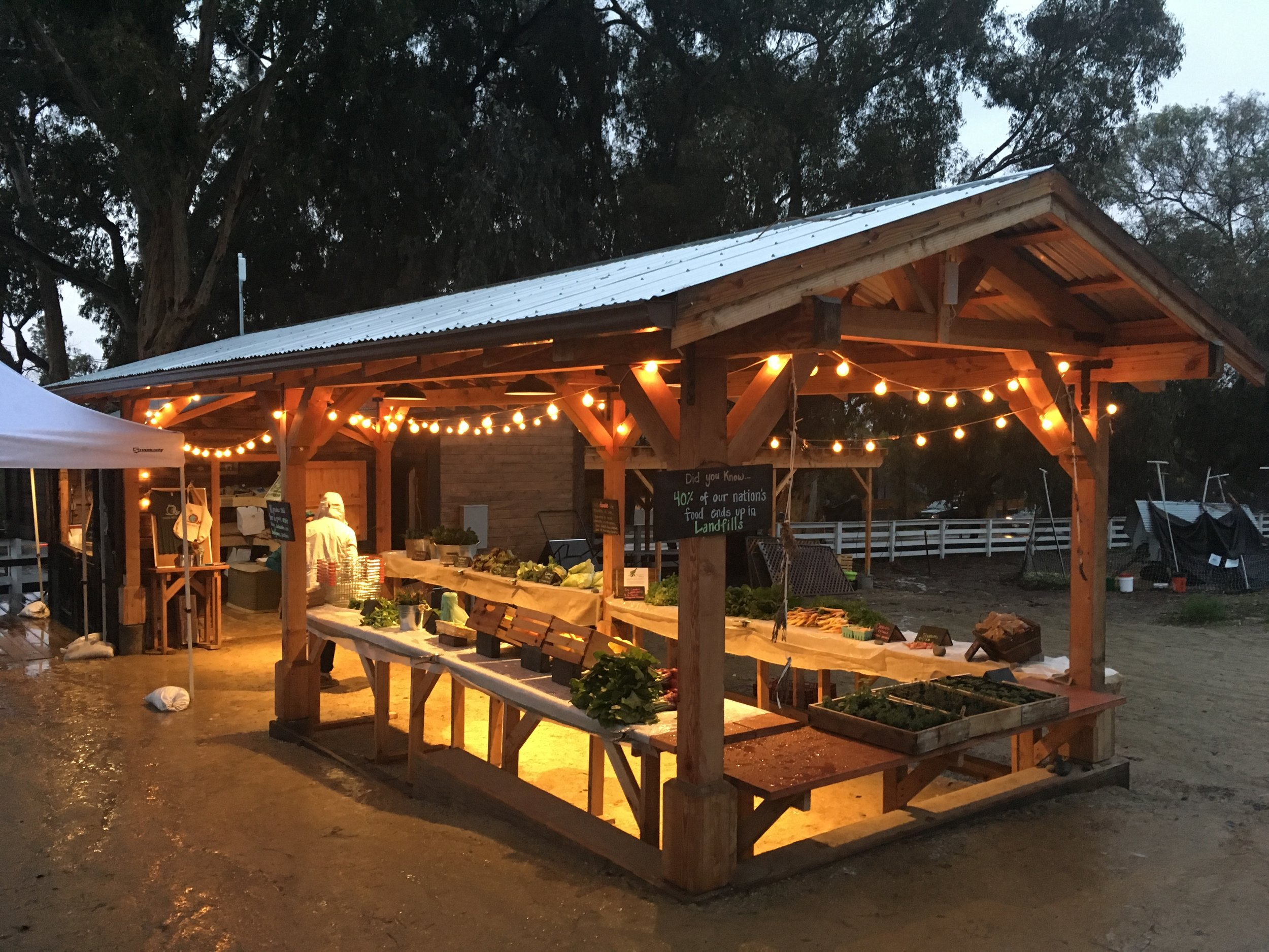 COASTAL ROOTS   A NON-PROFIT FARM THAT IS OPEN TWO DAYS A WEEK AND IT'S PAY WHAT YOU CAN!!!