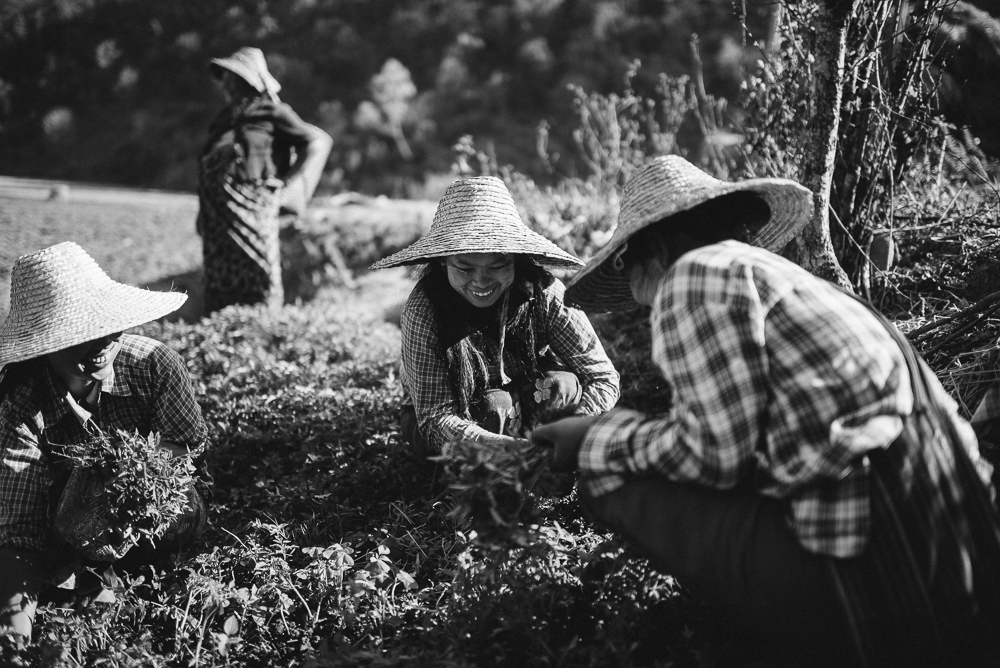 0034-AnneundBjoern_Myanmar-D76_5277.jpg