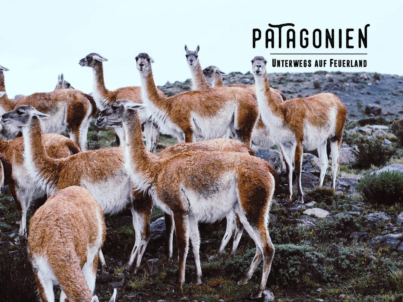Patagonien_Header.jpg