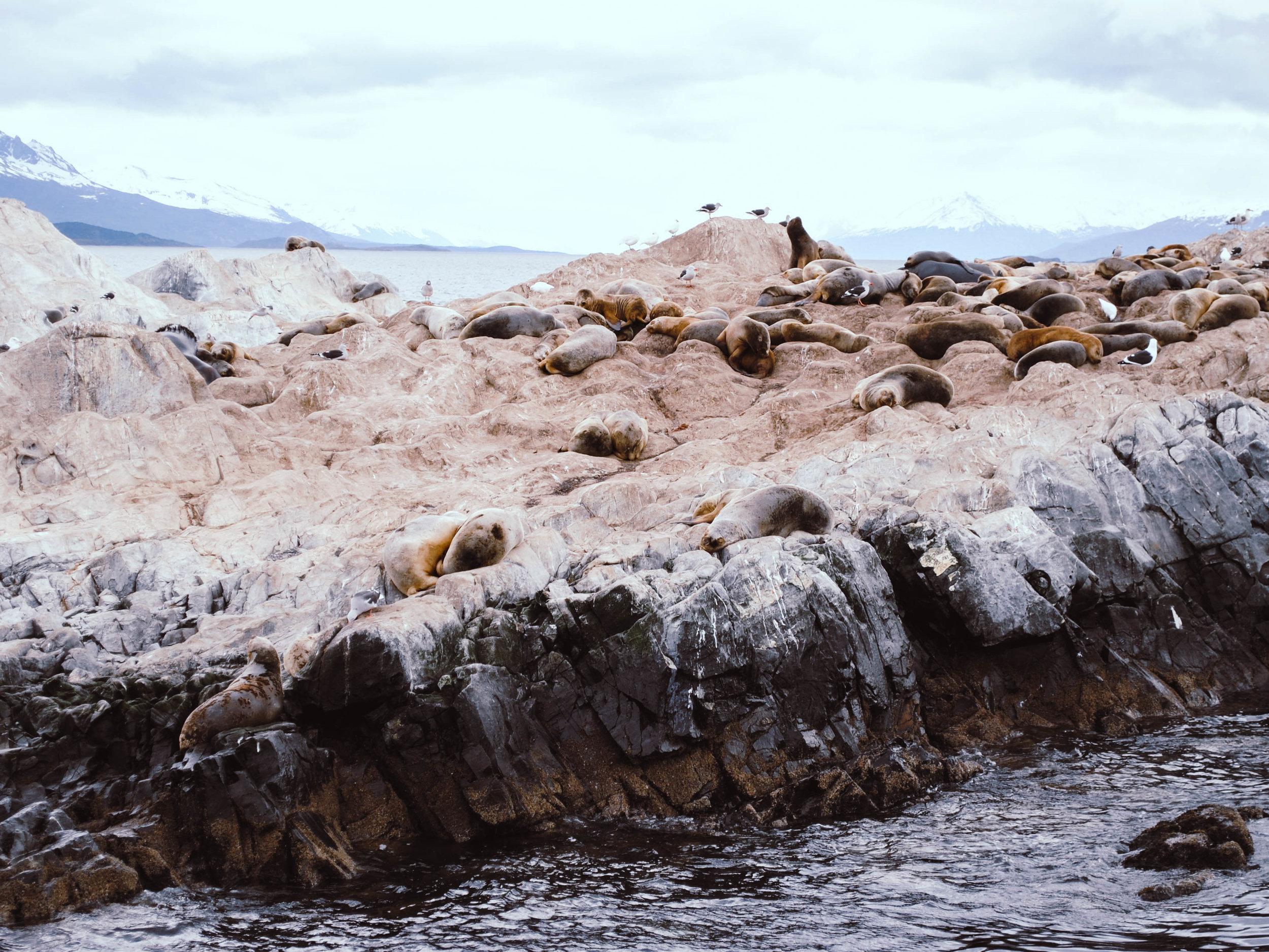 Patagonien_Feuerland_JocelyneBueckner_10.jpg