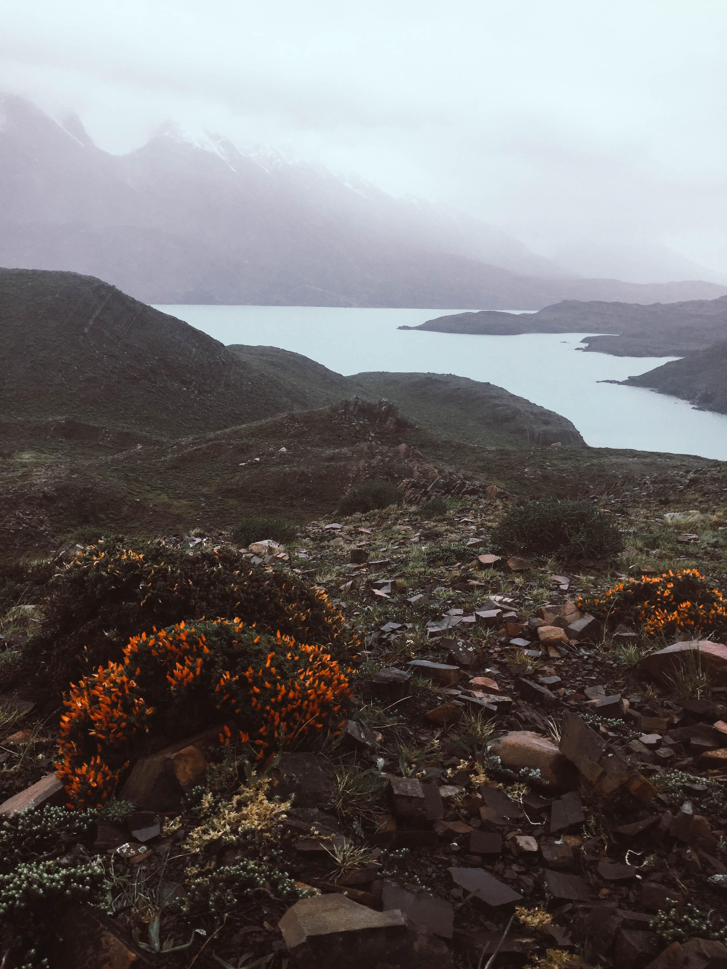 Patagonien_Torres+del+Paine_JocelyneBueckner_8.jpg
