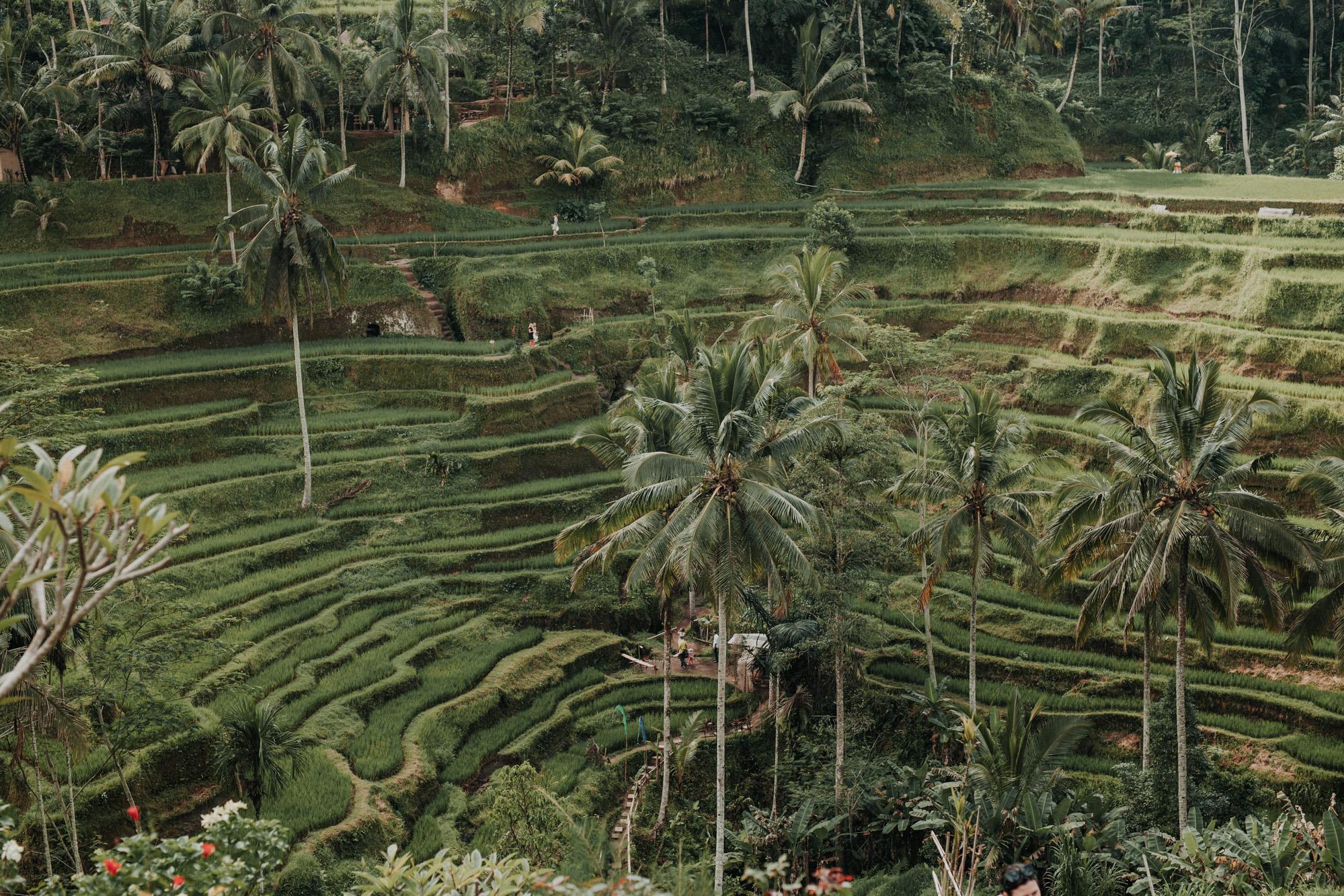 Fernweh_Bali (16).JPG