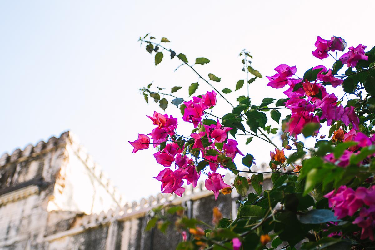 AlineLange_Indien_088.jpg