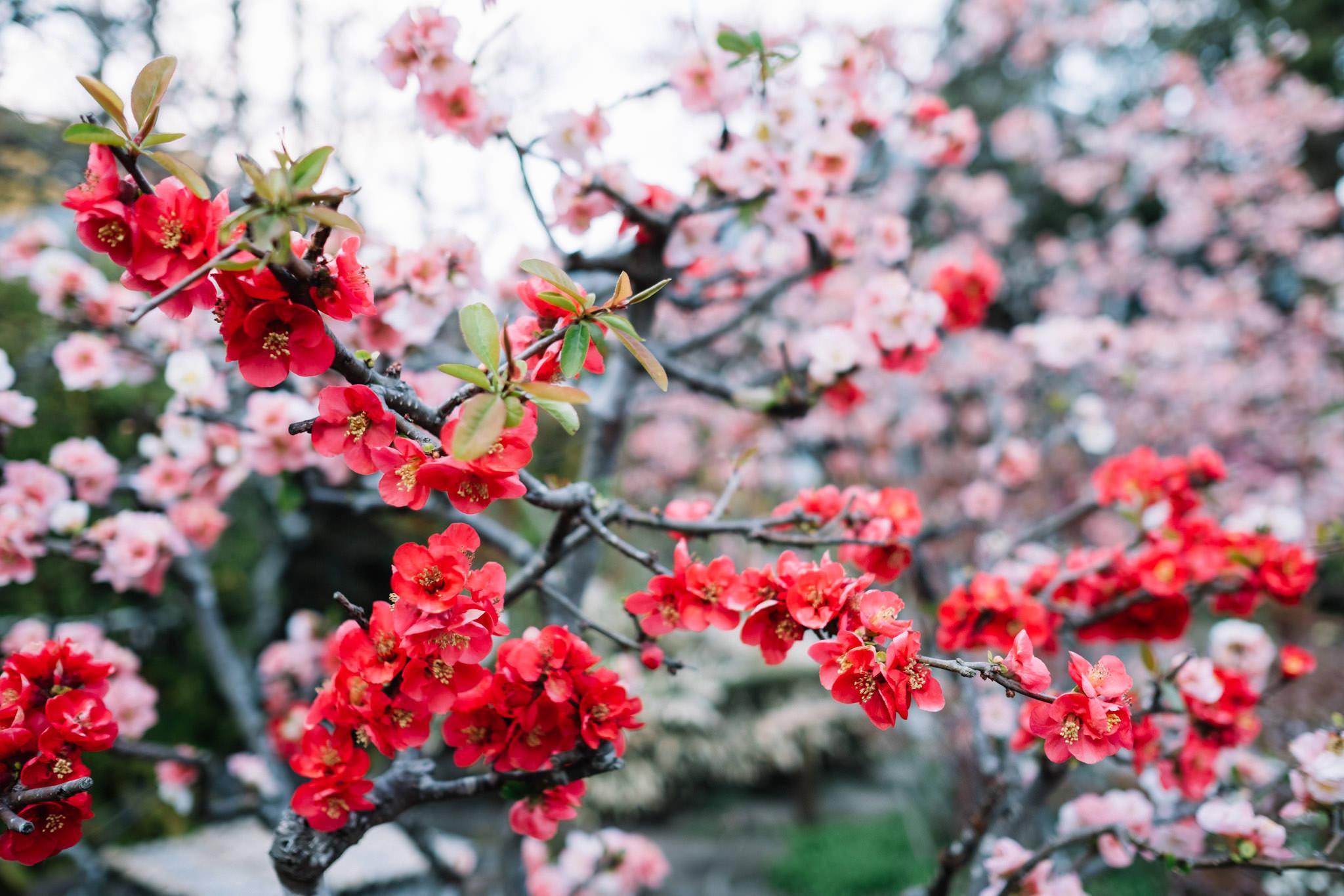 chris_eberhardt_japan_travel_reise_nippon-17.jpg