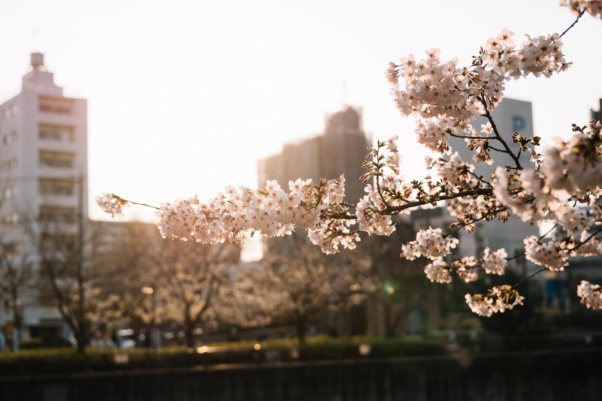 chris_eberhardt_japan_travel_reise_nippon-29.jpg