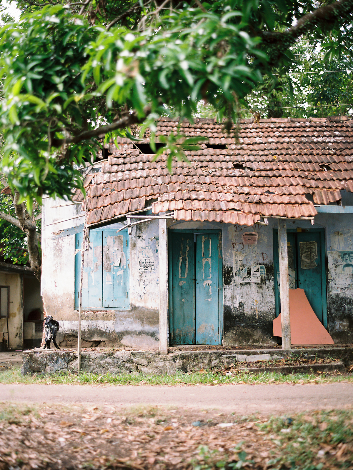 birgithart-travel-india_026.jpg